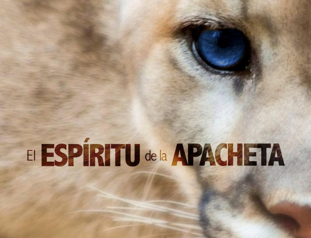 El Espíritu de la Apacheta