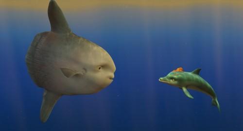 el delfin