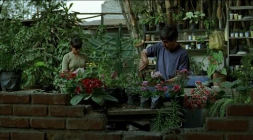 El jardinero y Fausta