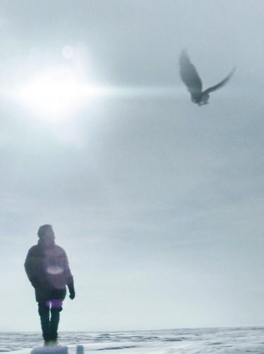 cillian-murphy-aloft