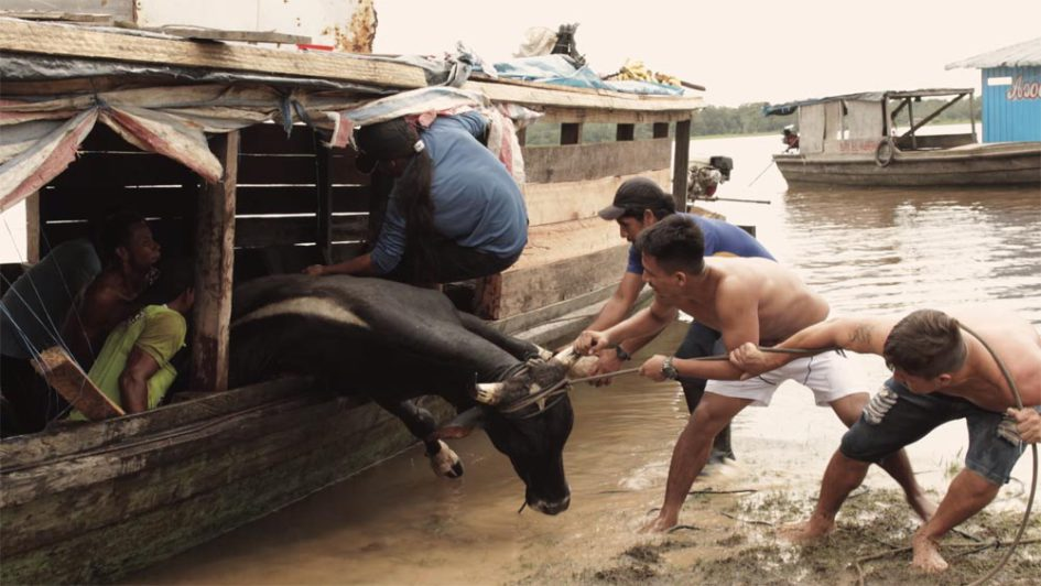 odisea-amazonica-documental